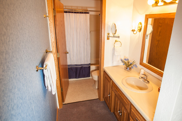 Nordic Lodge Suite - Bathroom